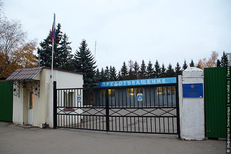 Г пушкин медицинские центры