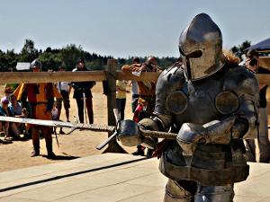 Любителей активного отдыха приглашают на рыцарский турнир «Железной розы»