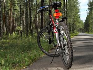 Велодорожки «подведут» ко всем пешеходным переходам