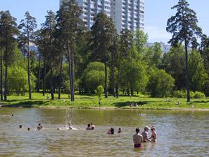 На Школьном озере спасли пьяного купальщика