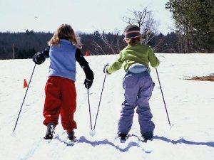 Лыжи для физкультуры – быстро, грамотно, недорого