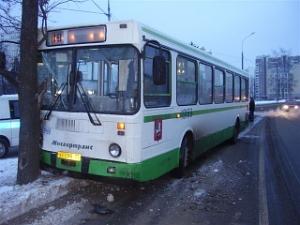 Автобус с пассажирами въехал в дерево