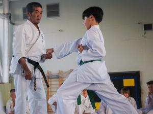 Семинар по каратэ в ФОК «Савелки» провел сенсей Сигэру Кендзё