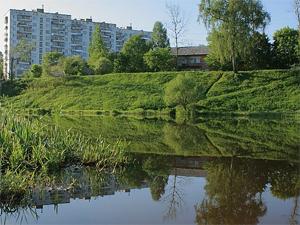 В поселке Менделеево запретили купаться