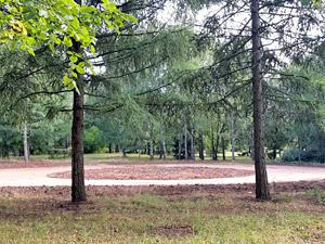 Строительство развлекательного центра в парке Победы окончательно отменено