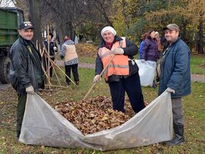 Коммунальщиков будут штрафовать за уборку листьев на газонах