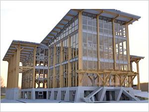 На Фирсановском шоссе возведут крупнейшее в России офисное здание из дерева