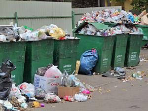 Коммунальщиков оштрафовали на 770 тысяч рублей за антисанитарию и невывоз мусора