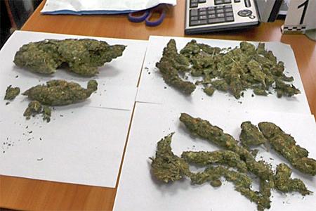 В Зеленограде задержали торговцев марихуаной