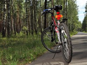 Определены места размещения лесных велопарковок