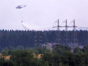 На Черном озере устроят учебный лесной пожар