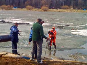 На Школьном озере спасли собаку