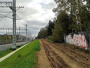 Жителей Малино заставляли покрасить забор перед проездом мэра на «Ласточке»