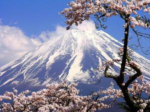 Уникальная программа обучения «Летние каникулы в Японии»