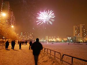 Взрывать петарды в Новый год разрешили в 9 местах