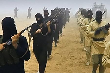Уехавшую в Сирию зеленоградку уличили в оправдании деятельности ИГИЛ