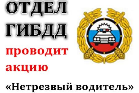 ГИБДД Солнечногоского района проведет массовую проверку водителей на алкоголь
