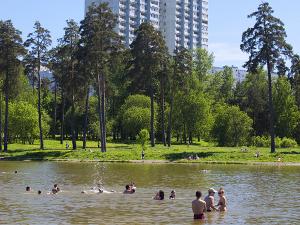 На Школьном озере утонул нетрезвый мужчина