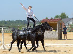 16 мая в клубе Vsedlo.ru: красивые девушки и лошади