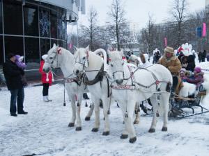 Рождественские гуляния в ТК «Панфиловский»