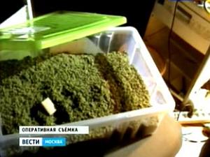 Зеленоградец организовал крупную нарколабораторию