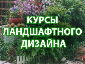 Открыт дополнительный набор на курсы ландшафтного дизайна в Зеленограде