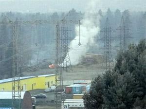 Вокруг Зеленограда запретили сжигать остатки леса