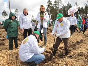 При участии подмосковного губернатора у Зеленограда посадят почти 100 тысяч деревьев