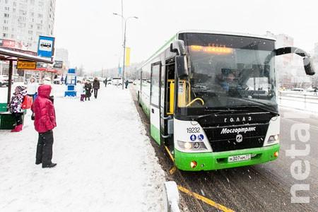 Префектура просит вернуть автобусам №400Э прежний маршрут