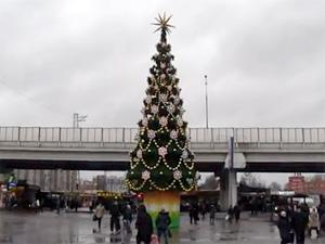 Зеленоградскую елку внесли в десятку самых дорогих в Москве