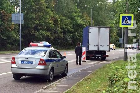 Водитель получил 1,5 года условно за сбитую насмерть женщину на Сосновой аллее