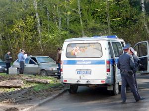 В 8-м микрорайоне воры обокрали пять машин