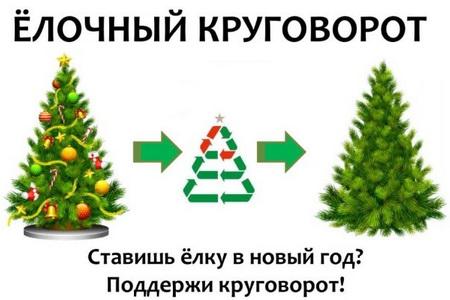 Отслужившую новогоднюю ель можно сдать на переработку