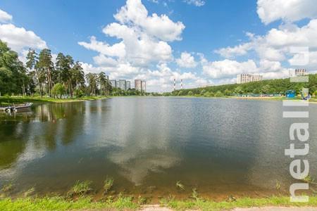 К Школьному озеру проложат подземный трубопровод для принудительной подпитки водоема