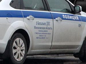 У «Штыков» пьяный водитель оказал сопротивление автоинспекторам