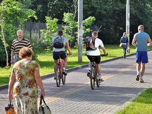 При префектуре создадут велокомиссию