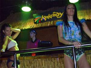 Часть ночных клубов на Яблоневой аллее заменят общепитом