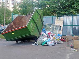 Чиновники объяснили «мусорный коллапс» реформой ЖКХ и нехваткой дворников