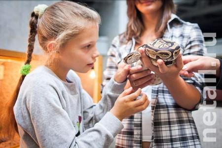 Посетителям КЦ «Зеленоград» покажут крокодилов и ядовитых змей