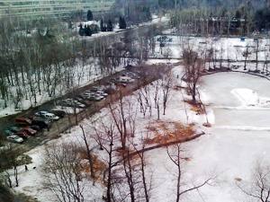 Власти отказались от возведения храма у Быкова болота