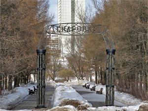 В Зеленограде могут появиться Фонвизинская Горка и Трохановский дендропарк