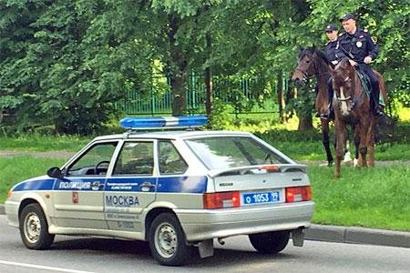 В Зеленоград вернулись конные полицейские патрули