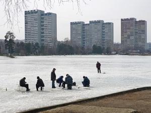 Префектура определила места для рыбаков и «моржей»