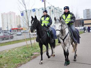 В Зеленоград вернулась конная милиция