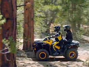 Лесных инспекторов пересадят на квадроциклы