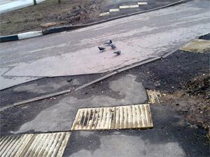 Тротуары продолжают оборудовать тактильной плиткой