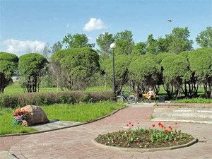 В парке «Ровесник» установят спортивные и детские площадки