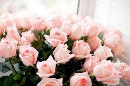 Маркет цветов «Розовые розы» объявляет неделю скидок