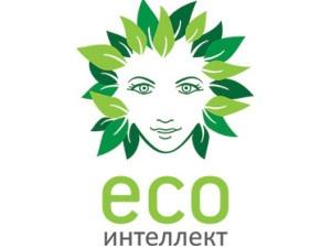 Экологичный быт — здоровая семья!