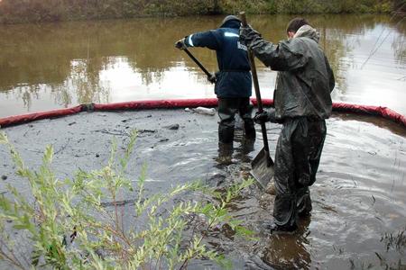 Полиция расследует массовую гибель рыбы в притоке Горетовки